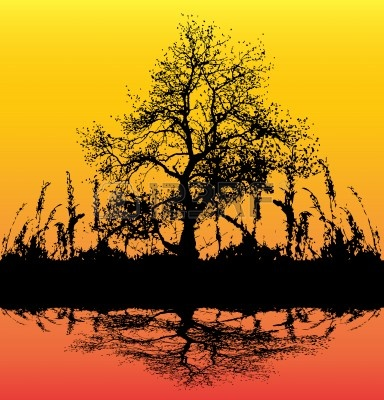 4181412-dawn-tree-background